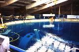 Vodní nádrž W.E.T.F. pro simulaci stavu mikrogravitace