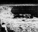 Jeden z větších kráterů severovýchodně od místa měsíčního modulu. Autorem tohoto i ostatních snímků je Neil Armstrong