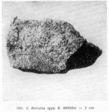 Hornina typu B. Měřítko = 1 cm