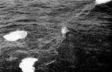Poslední metry cesty - padáky ve vodě